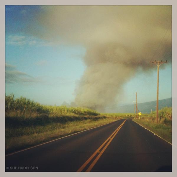 road_burn